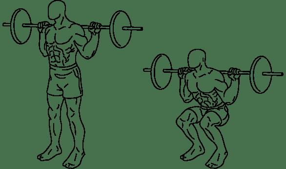 2000px-squats